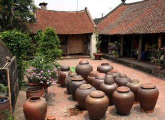 Village Duong Lam
