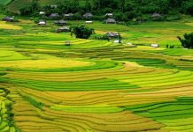 Tu Le Nord Vietnam