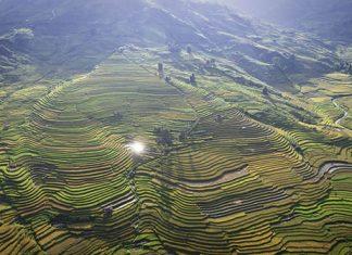 Mu Cang Chai au Vietnam
