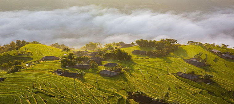 Oùvisiter les rizières en terrasses au Vietnam 1
