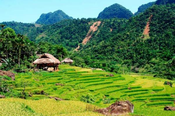 Oùvisiter les rizières en terrasses au Vietnam 3